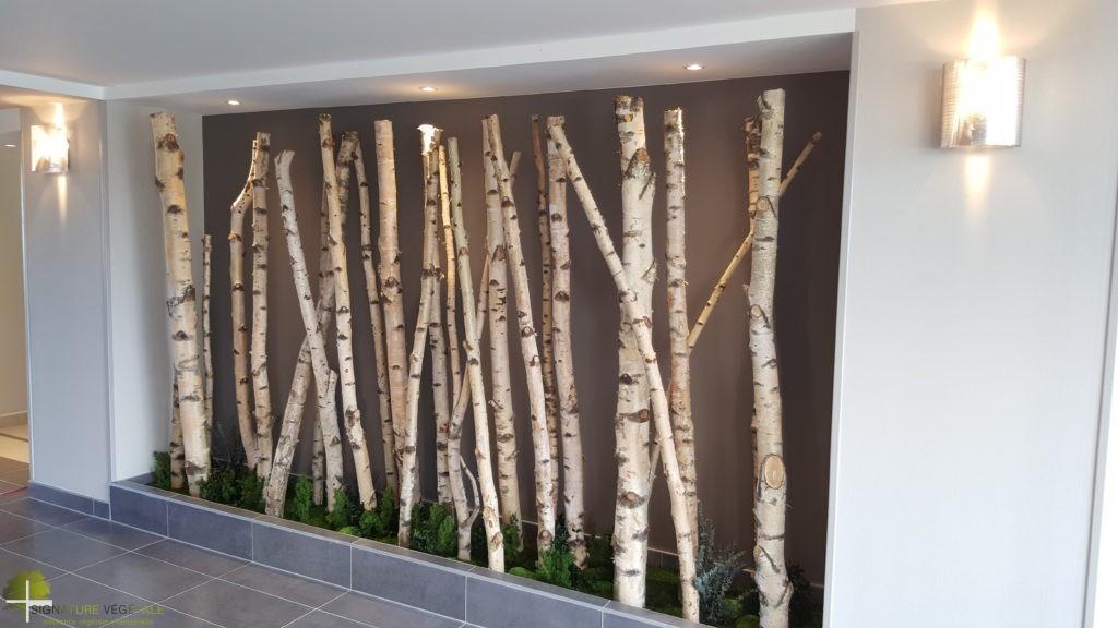 Ensemble de troncs de bouleau